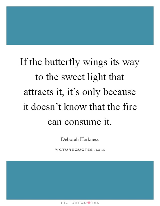 If the butterfly wings its way to the sweet light that attracts it, it's only because it doesn't know that the fire can consume it. Picture Quote #1
