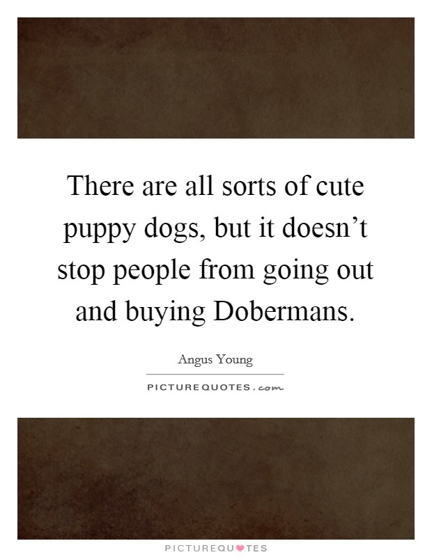 There are all sorts of cute puppy dogs, but it doesn't stop people from going out and buying Dobermans. Picture Quote #1