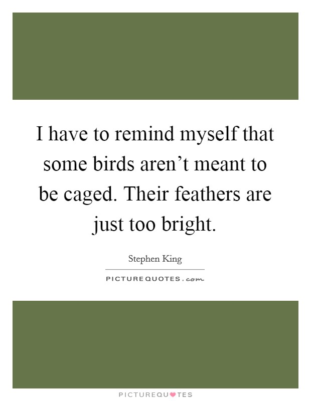 I have to remind myself that some birds aren't meant to be caged. Their feathers are just too bright Picture Quote #1