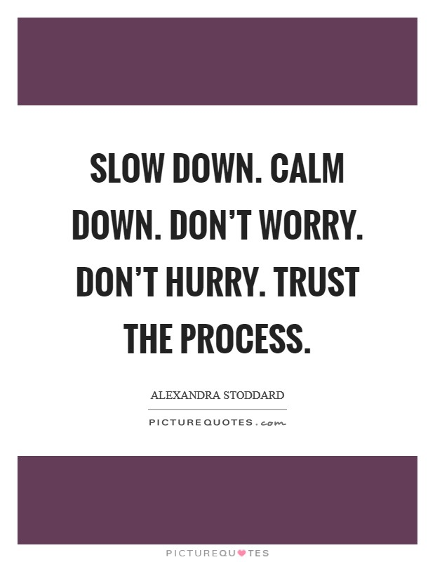 Slow down. Calm down. Don't worry. Don't hurry. Trust the process Picture Quote #1