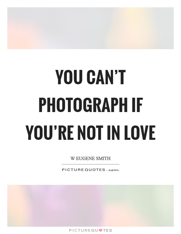 You can't photograph if you're not in love Picture Quote #1