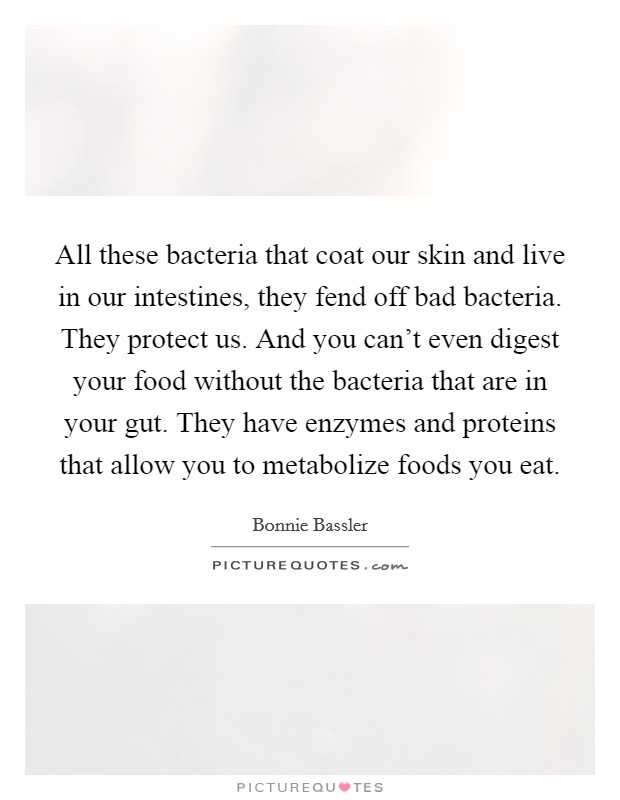 All these bacteria that coat our skin and live in our intestines, they fend off bad bacteria. They protect us. And you can't even digest your food without the bacteria that are in your gut. They have enzymes and proteins that allow you to metabolize foods you eat Picture Quote #1