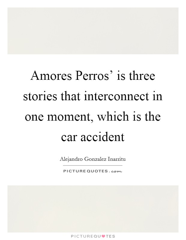 Amores Perros' is three stories that interconnect in one moment, which is the car accident Picture Quote #1
