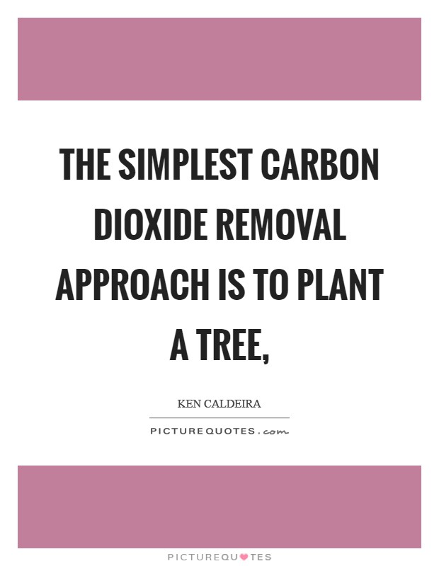 The simplest carbon dioxide removal approach is to plant a tree, Picture Quote #1