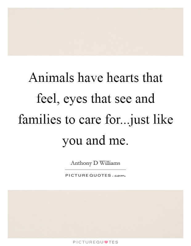 Animals have hearts that feel, eyes that see and families to care for...just like you and me Picture Quote #1