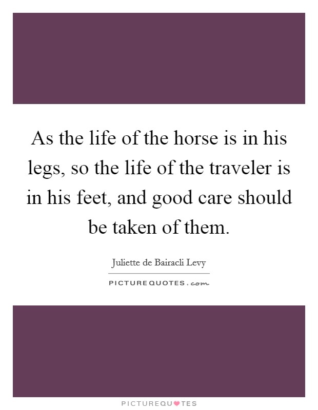 As the life of the horse is in his legs, so the life of the traveler is in his feet, and good care should be taken of them Picture Quote #1