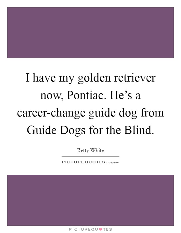 I have my golden retriever now, Pontiac. He's a career-change guide dog from Guide Dogs for the Blind Picture Quote #1