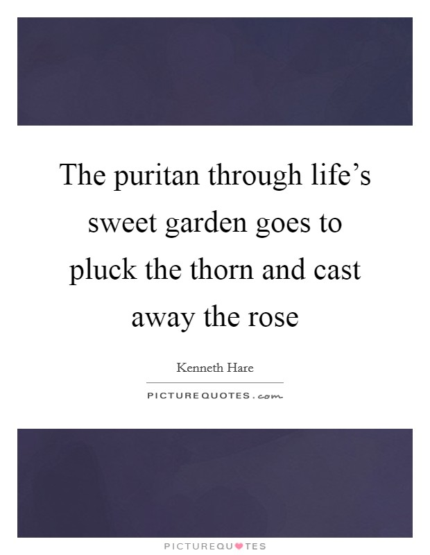 The puritan through life's sweet garden goes to pluck the thorn and cast away the rose Picture Quote #1