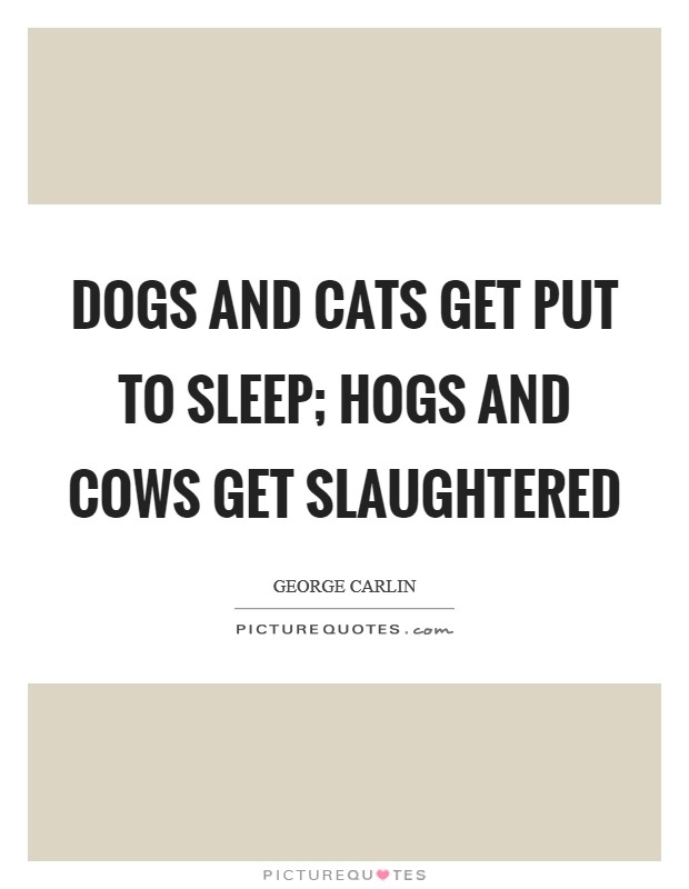 Dogs and cats get put to sleep; hogs and cows get slaughtered Picture Quote #1