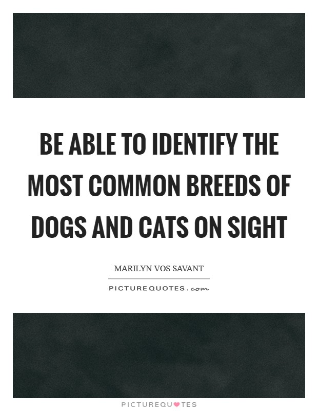 Be able to identify the most common breeds of dogs and cats on sight Picture Quote #1
