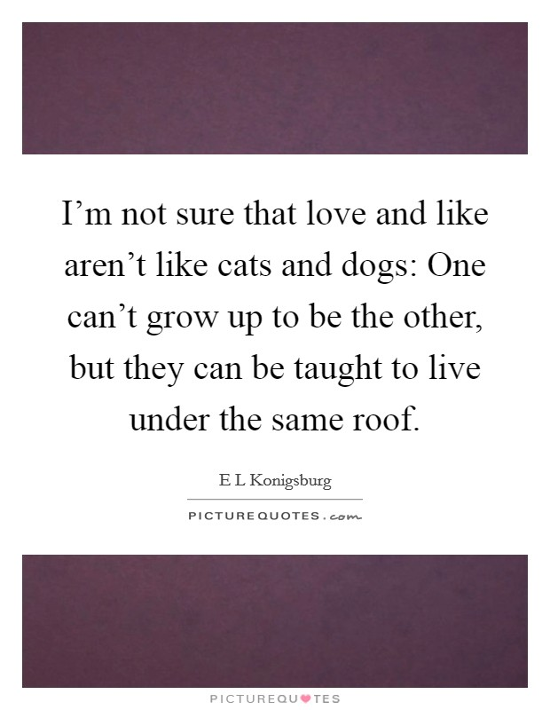 I'm not sure that love and like aren't like cats and dogs: One can't grow up to be the other, but they can be taught to live under the same roof Picture Quote #1