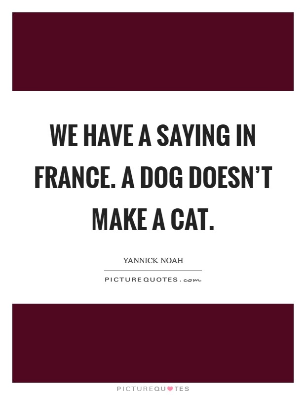 We have a saying in France. A dog doesn't make a cat Picture Quote #1