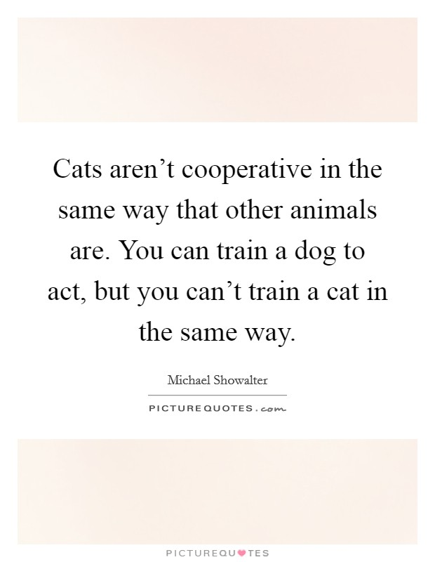 Cats aren't cooperative in the same way that other animals are. You can train a dog to act, but you can't train a cat in the same way Picture Quote #1