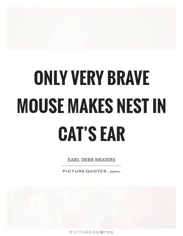 Only very brave mouse makes nest in cat's ear Picture Quote #1