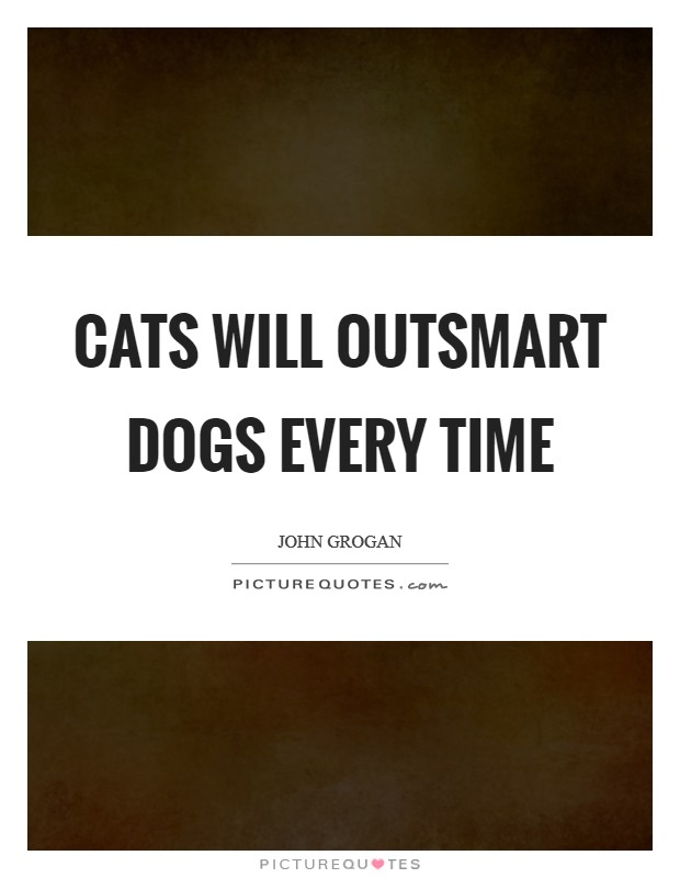 Cats will outsmart dogs every time Picture Quote #1