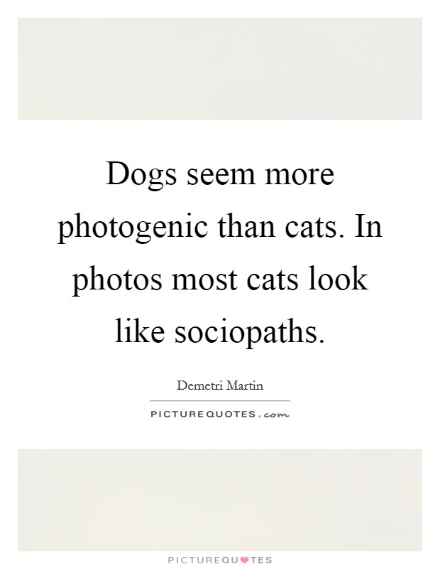 Dogs seem more photogenic than cats. In photos most cats look like sociopaths Picture Quote #1