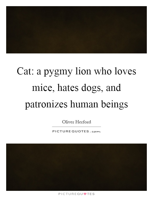 Cat: a pygmy lion who loves mice, hates dogs, and patronizes human beings Picture Quote #1