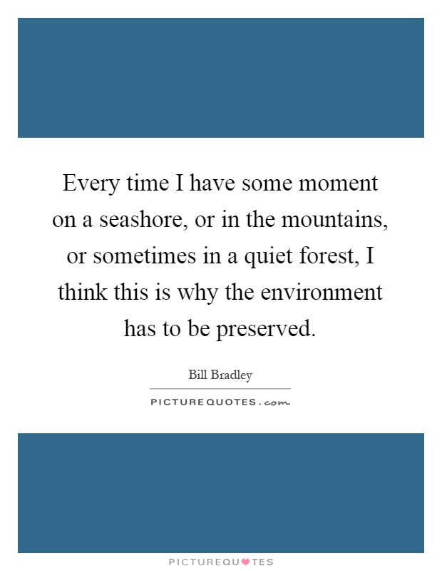Every time I have some moment on a seashore, or in the mountains, or sometimes in a quiet forest, I think this is why the environment has to be preserved Picture Quote #1