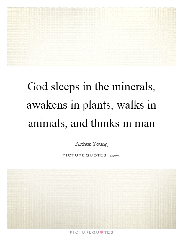 God sleeps in the minerals, awakens in plants, walks in animals, and thinks in man Picture Quote #1