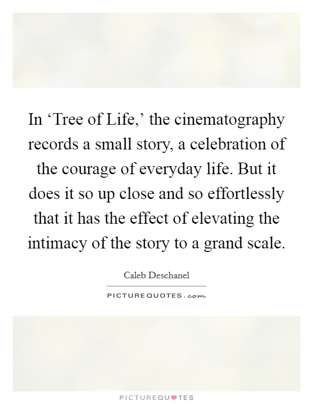 In 'Tree of Life,' the cinematography records a small story, a celebration of the courage of everyday life. But it does it so up close and so effortlessly that it has the effect of elevating the intimacy of the story to a grand scale Picture Quote #1