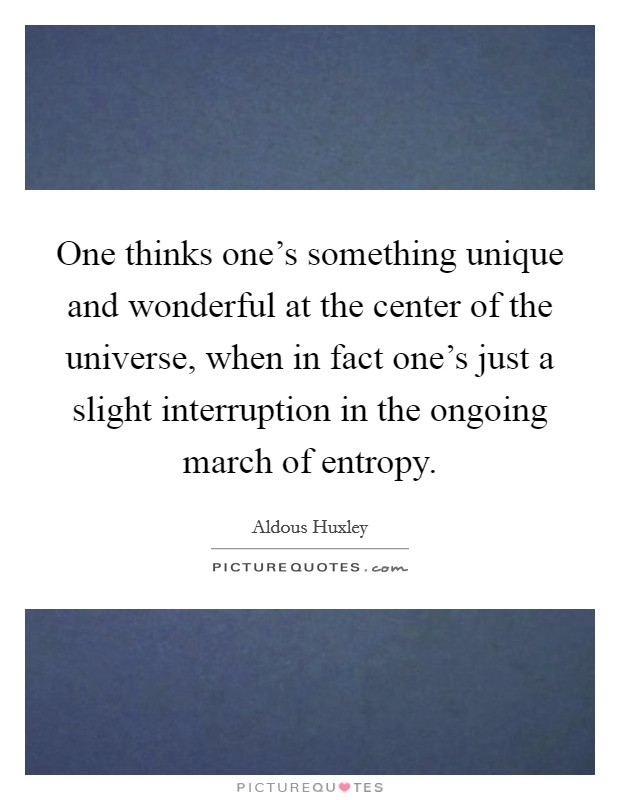 One thinks one's something unique and wonderful at the center of the universe, when in fact one's just a slight interruption in the ongoing march of entropy Picture Quote #1