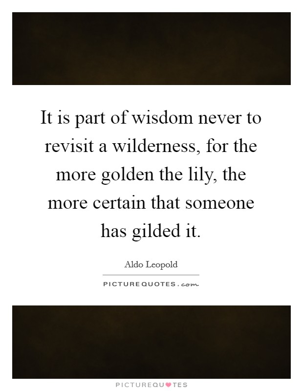 It is part of wisdom never to revisit a wilderness, for the more golden the lily, the more certain that someone has gilded it Picture Quote #1