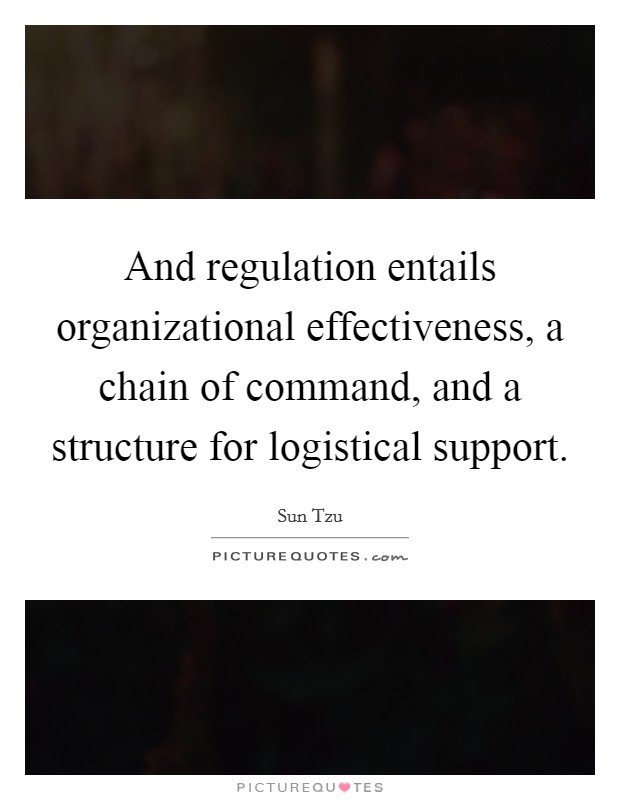 And regulation entails organizational effectiveness, a chain of command, and a structure for logistical support Picture Quote #1