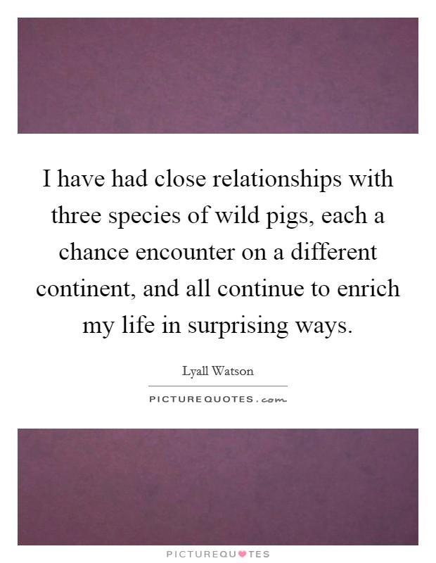 I have had close relationships with three species of wild pigs, each a chance encounter on a different continent, and all continue to enrich my life in surprising ways Picture Quote #1