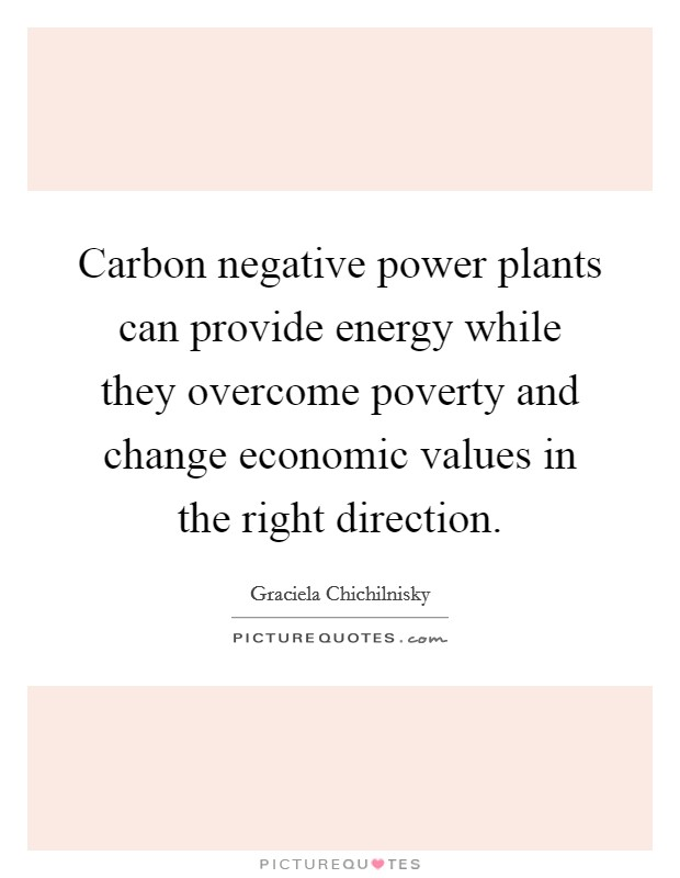 Carbon negative power plants can provide energy while they overcome poverty and change economic values in the right direction Picture Quote #1