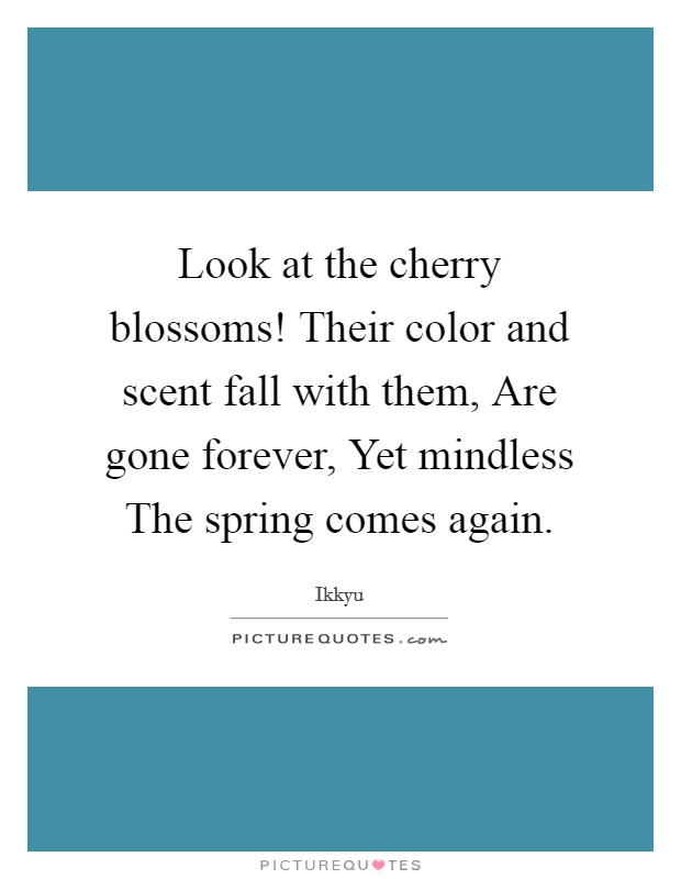 Look at the cherry blossoms! Their color and scent fall with them, Are gone forever, Yet mindless The spring comes again Picture Quote #1