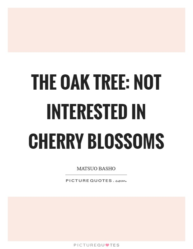 The oak tree: not interested in cherry blossoms Picture Quote #1