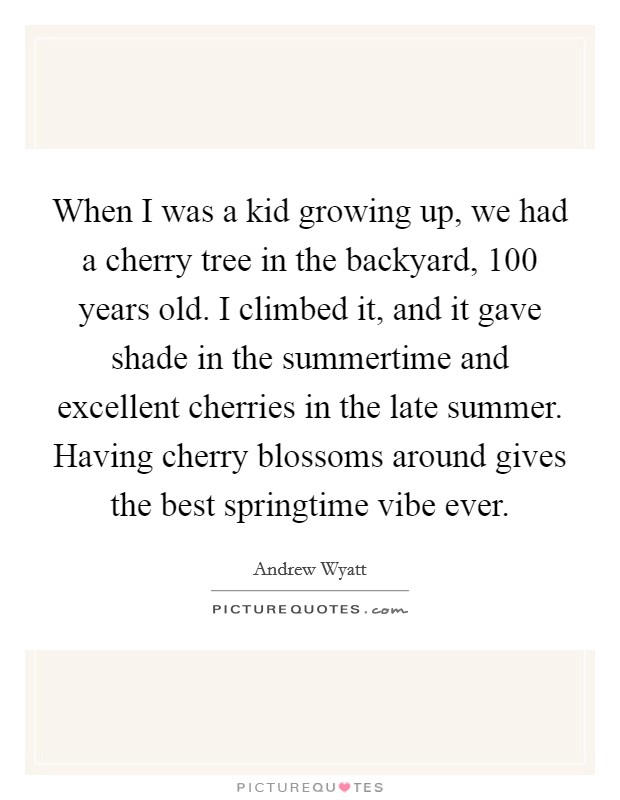 When I was a kid growing up, we had a cherry tree in the backyard, 100 years old. I climbed it, and it gave shade in the summertime and excellent cherries in the late summer. Having cherry blossoms around gives the best springtime vibe ever Picture Quote #1