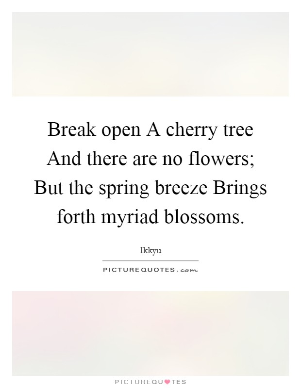 Break open A cherry tree And there are no flowers; But the spring breeze Brings forth myriad blossoms Picture Quote #1
