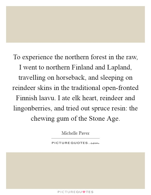 To experience the northern forest in the raw, I went to northern Finland and Lapland, travelling on horseback, and sleeping on reindeer skins in the traditional open-fronted Finnish laavu. I ate elk heart, reindeer and lingonberries, and tried out spruce resin: the chewing gum of the Stone Age Picture Quote #1
