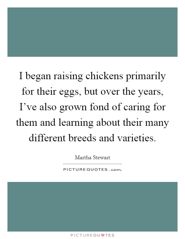 I began raising chickens primarily for their eggs, but over the years, I've also grown fond of caring for them and learning about their many different breeds and varieties Picture Quote #1