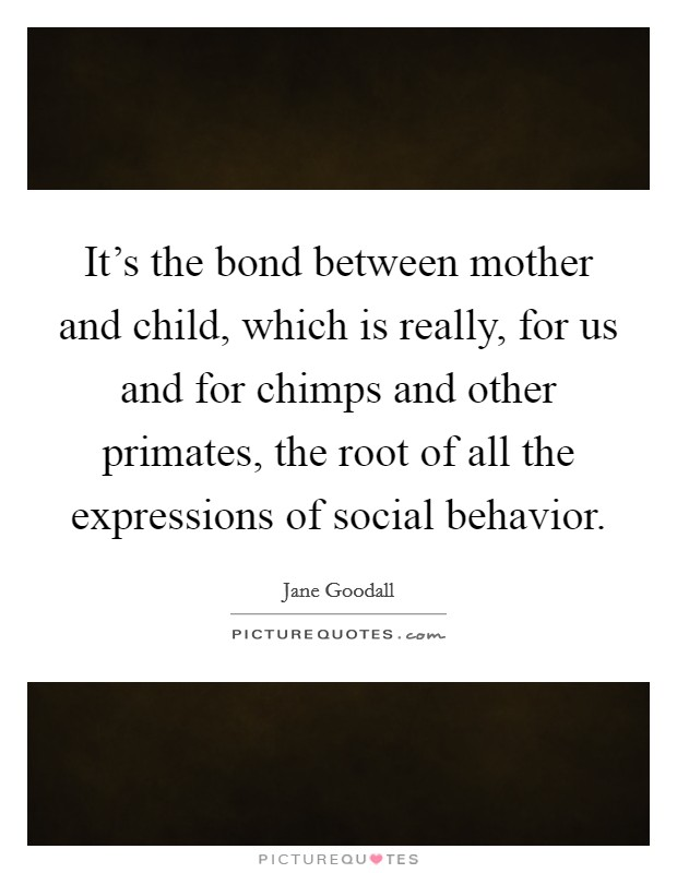 Bond Between Mother And Child Quotes Custom It's The Bond Between Mother And Child Which Is Really For Us