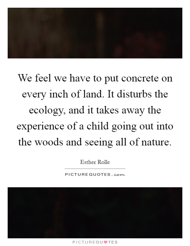 We feel we have to put concrete on every inch of land. It disturbs the ecology, and it takes away the experience of a child going out into the woods and seeing all of nature Picture Quote #1