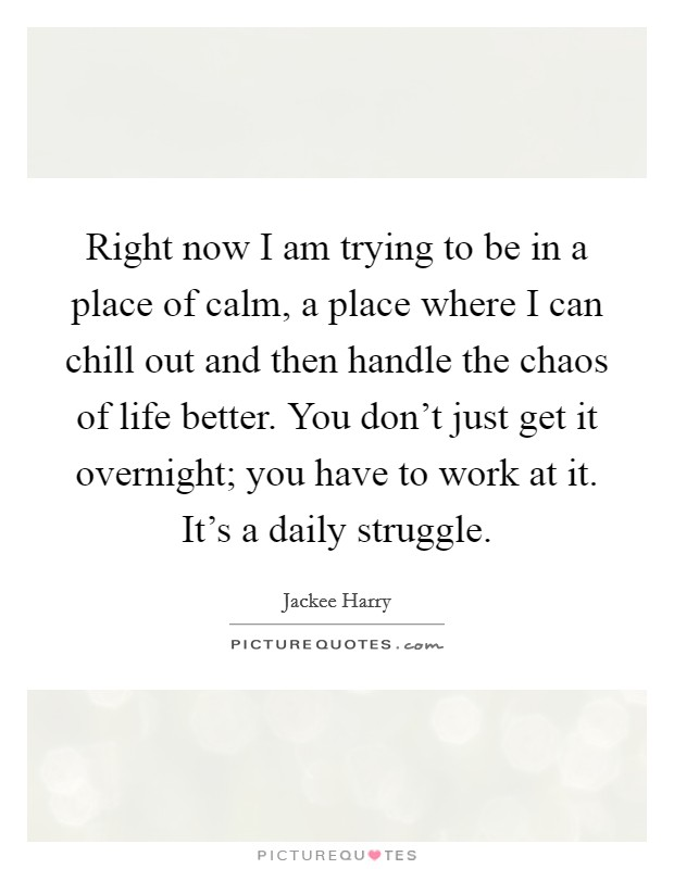 Right now I am trying to be in a place of calm, a place where I can chill out and then handle the chaos of life better. You don't just get it overnight; you have to work at it. It's a daily struggle Picture Quote #1