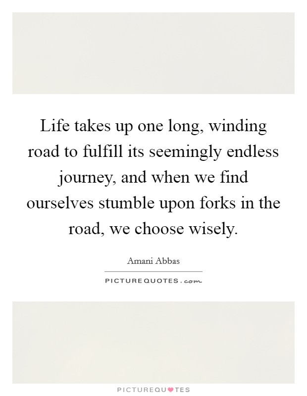 Life takes up one long, winding road to fulfill its seemingly endless journey, and when we find ourselves stumble upon forks in the road, we choose wisely Picture Quote #1