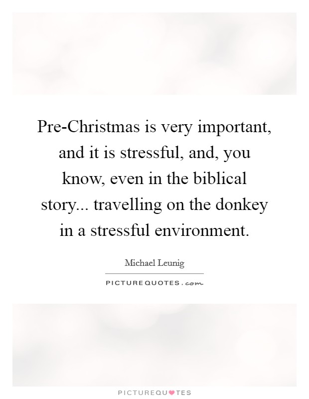 Pre-Christmas is very important, and it is stressful, and, you know, even in the biblical story... travelling on the donkey in a stressful environment Picture Quote #1