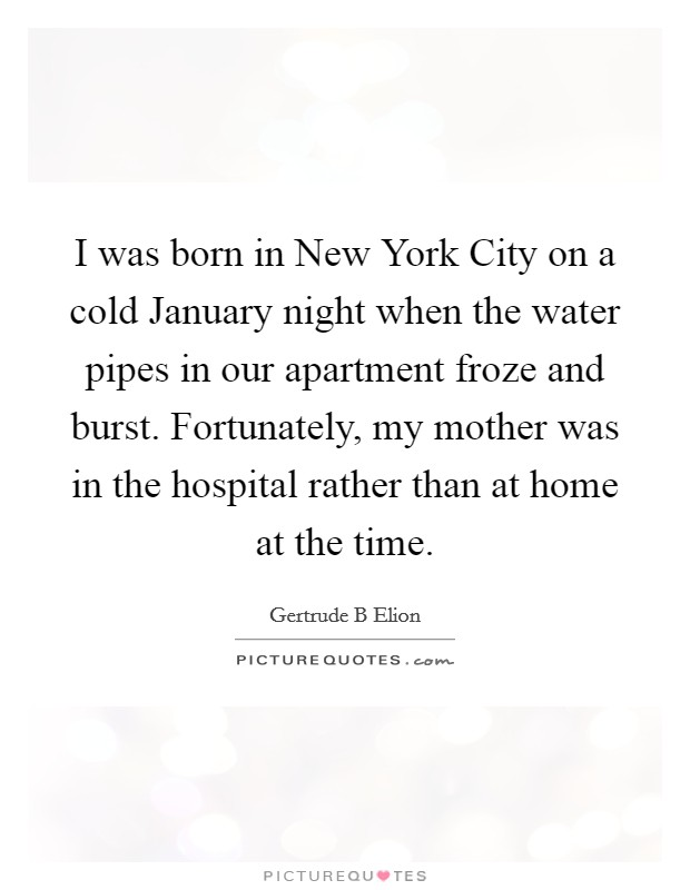 I was born in New York City on a cold January night when the water pipes in our apartment froze and burst. Fortunately, my mother was in the hospital rather than at home at the time Picture Quote #1