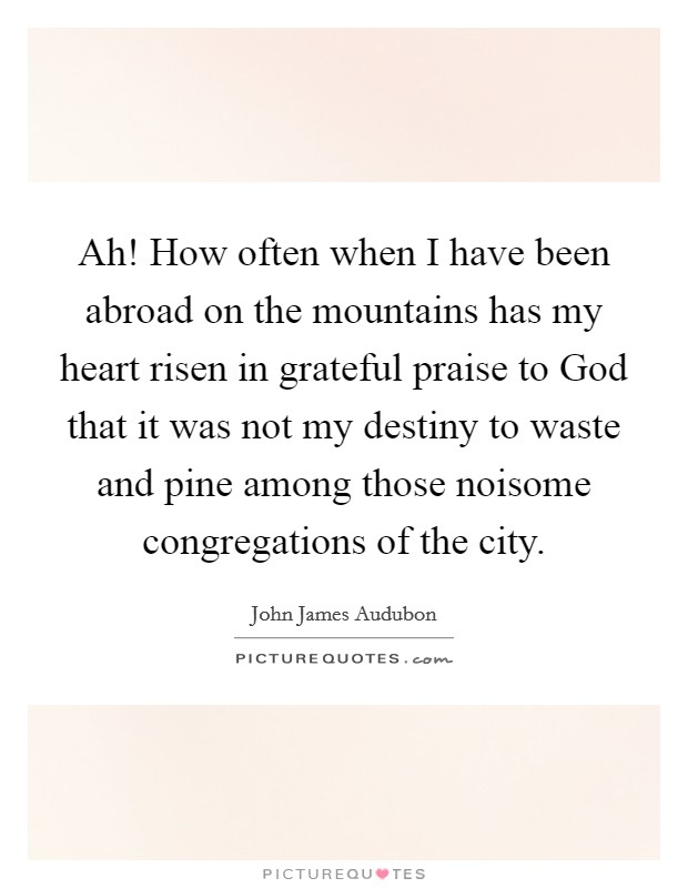 Ah! How often when I have been abroad on the mountains has my heart risen in grateful praise to God that it was not my destiny to waste and pine among those noisome congregations of the city. Picture Quote #1