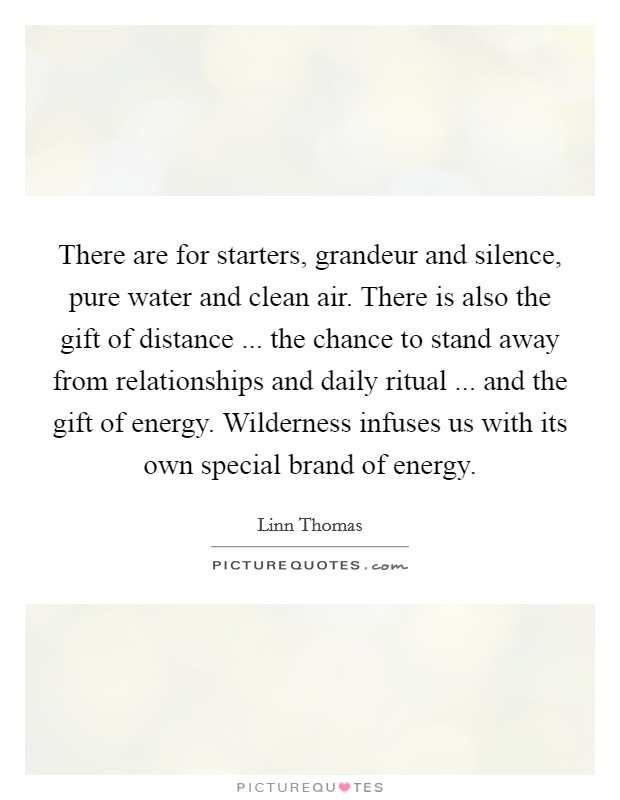 There are for starters, grandeur and silence, pure water and clean air. There is also the gift of distance ... the chance to stand away from relationships and daily ritual ... and the gift of energy. Wilderness infuses us with its own special brand of energy Picture Quote #1