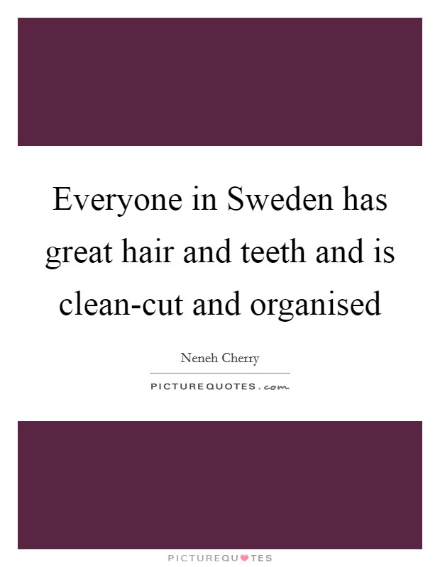 Everyone in Sweden has great hair and teeth and is clean-cut and organised Picture Quote #1