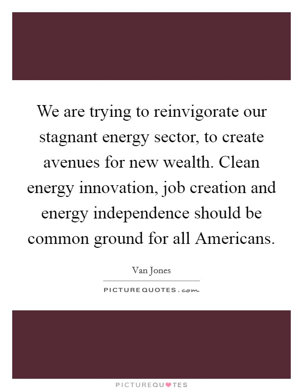 We are trying to reinvigorate our stagnant energy sector, to create avenues for new wealth. Clean energy innovation, job creation and energy independence should be common ground for all Americans Picture Quote #1