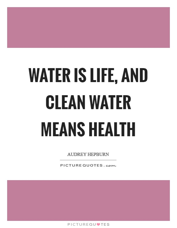 Water is life, and clean water means health Picture Quote #1