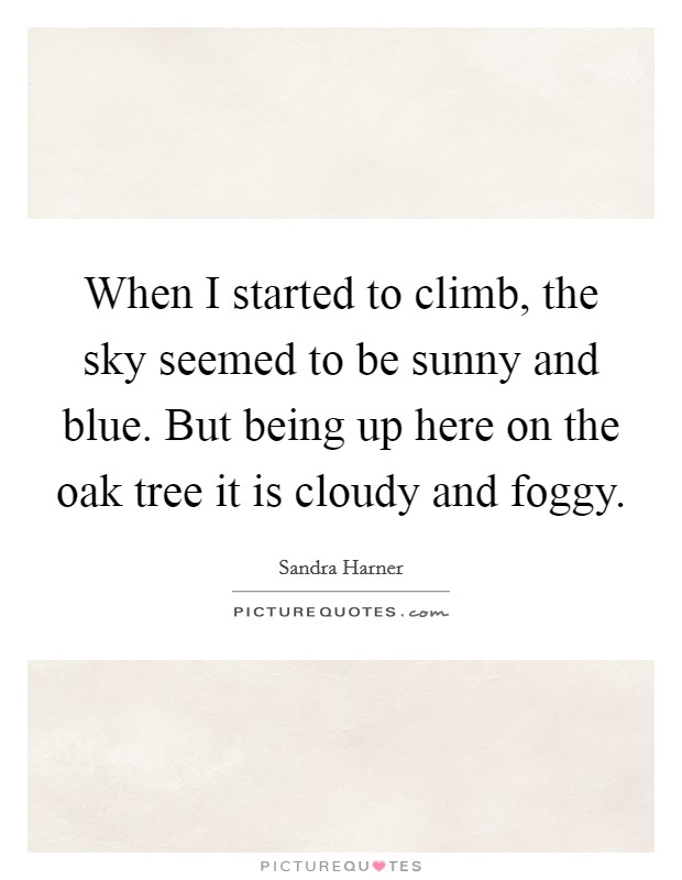 When I started to climb, the sky seemed to be sunny and blue. But being up here on the oak tree it is cloudy and foggy Picture Quote #1