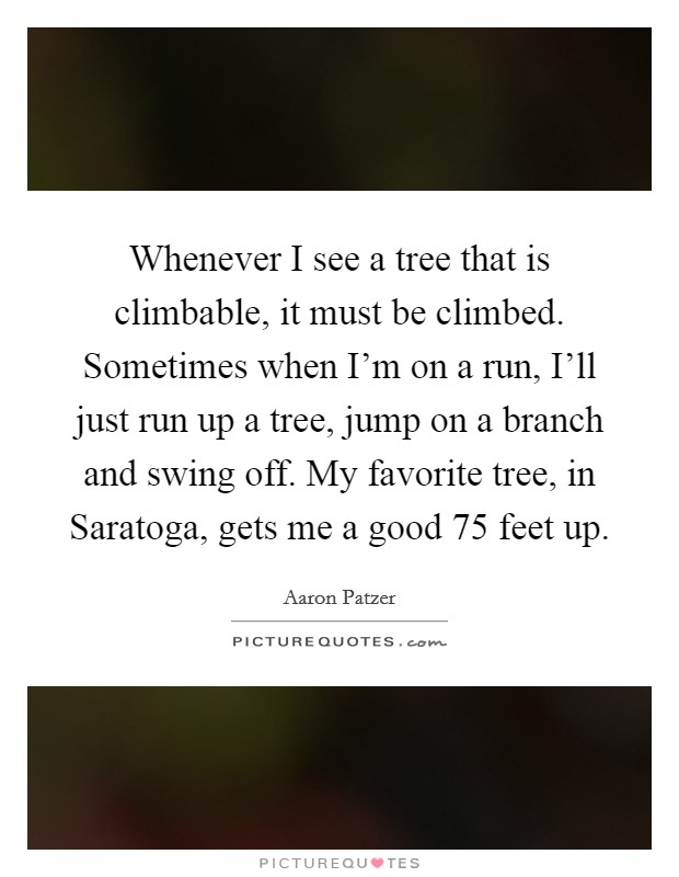 Whenever I see a tree that is climbable, it must be climbed. Sometimes when I'm on a run, I'll just run up a tree, jump on a branch and swing off. My favorite tree, in Saratoga, gets me a good 75 feet up Picture Quote #1