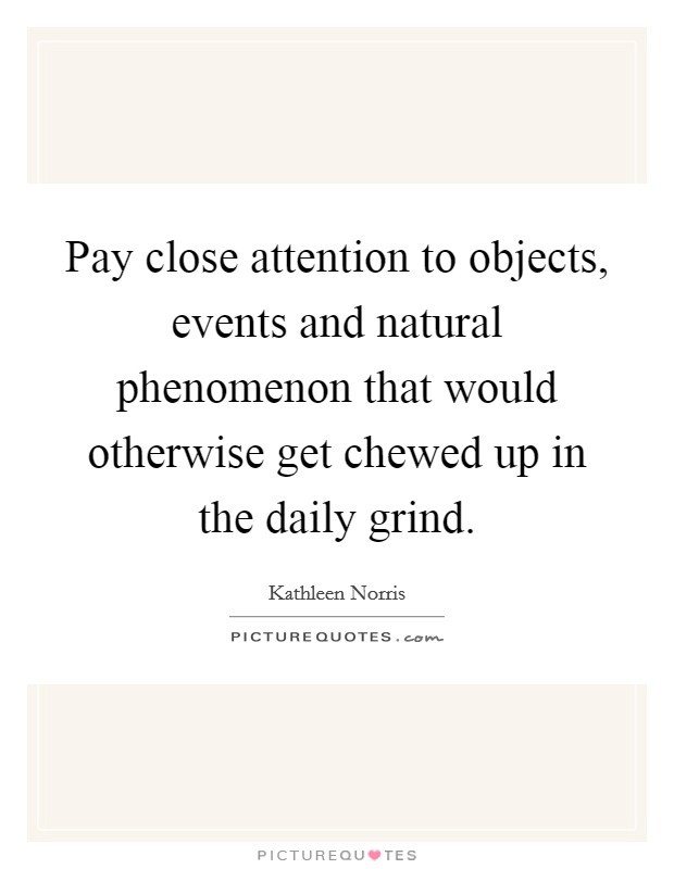 Pay close attention to objects, events and natural phenomenon that would otherwise get chewed up in the daily grind Picture Quote #1