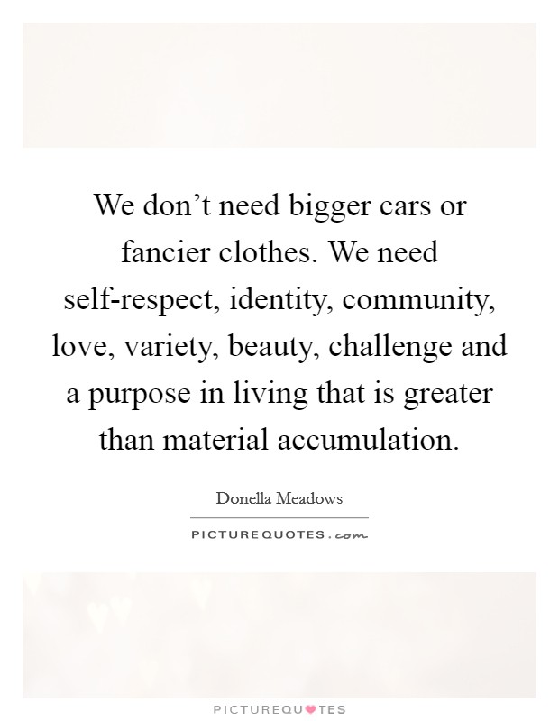 We don't need bigger cars or fancier clothes. We need self-respect, identity, community, love, variety, beauty, challenge and a purpose in living that is greater than material accumulation Picture Quote #1